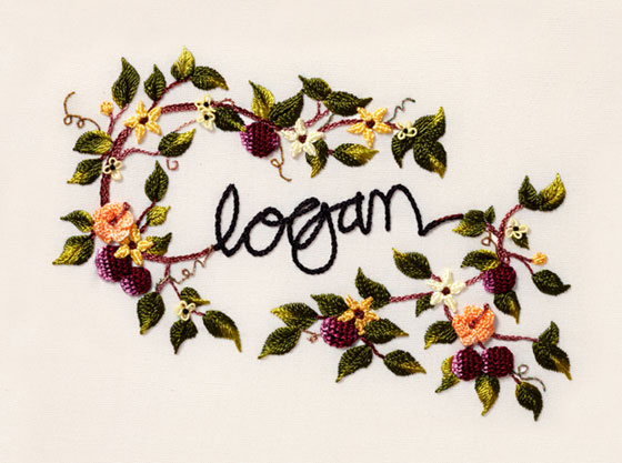 logan purple Branding Inspiration: Logan Wines